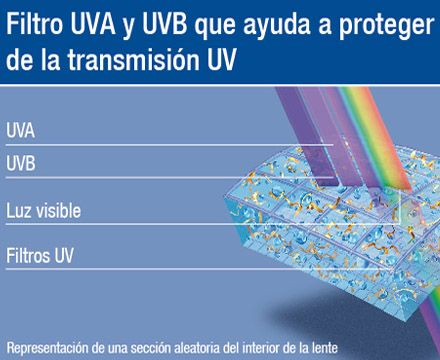 Absorcion uva Luyando Opticos